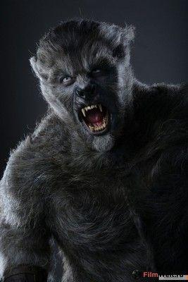 Wolves 2014 Vampires And Werewolves Fantasy Wolf Werewolf Art