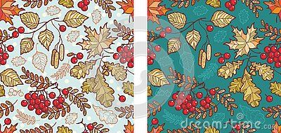 Autumn leaves seamless pattern with Rowan, maple, birch and oak. Fall leaf design.Foliage forest leaf vector. Red, Green, brown and yellow falling autumn leaves.Rowan, ash, mountain ash with ashberry. #autumnleavesfalling