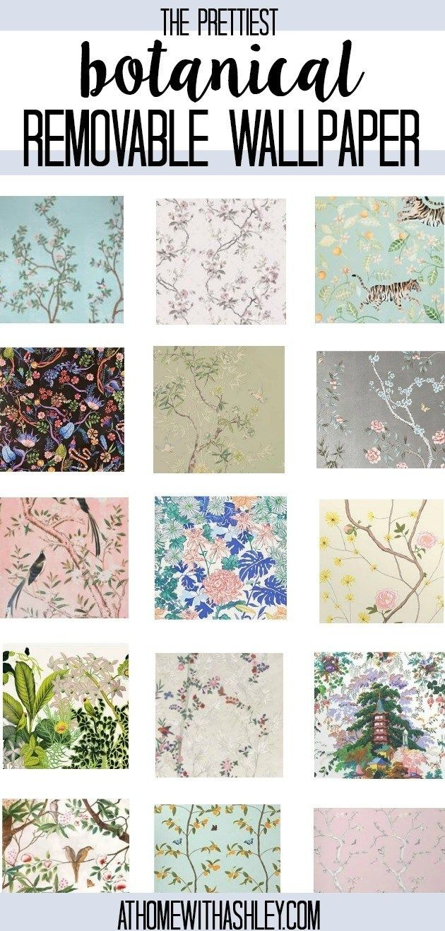 Chinoiserie Removable Wallpaper - at home with Ashley