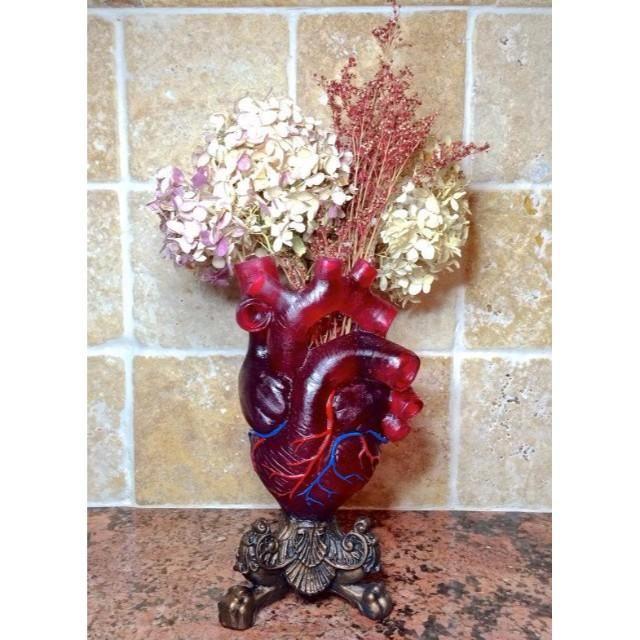 Translucent Red Heart Vase Anatomical Decor Corazones