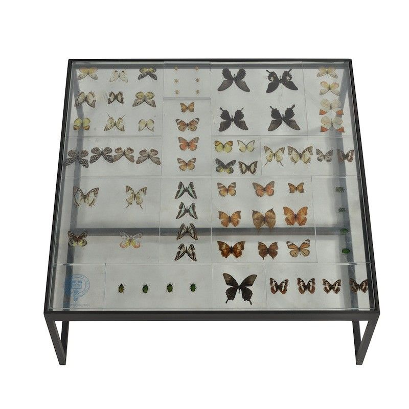 Glass U0026 Metal Butterfly Coffee Tables By Timothy Oulton