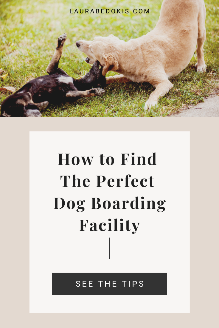 Ready for your next trip but nervous about who will be caring for your furbaby? Here's how to choose the perfect boarding facility for your pooch! #dogtips #dogboarding #dogsitting