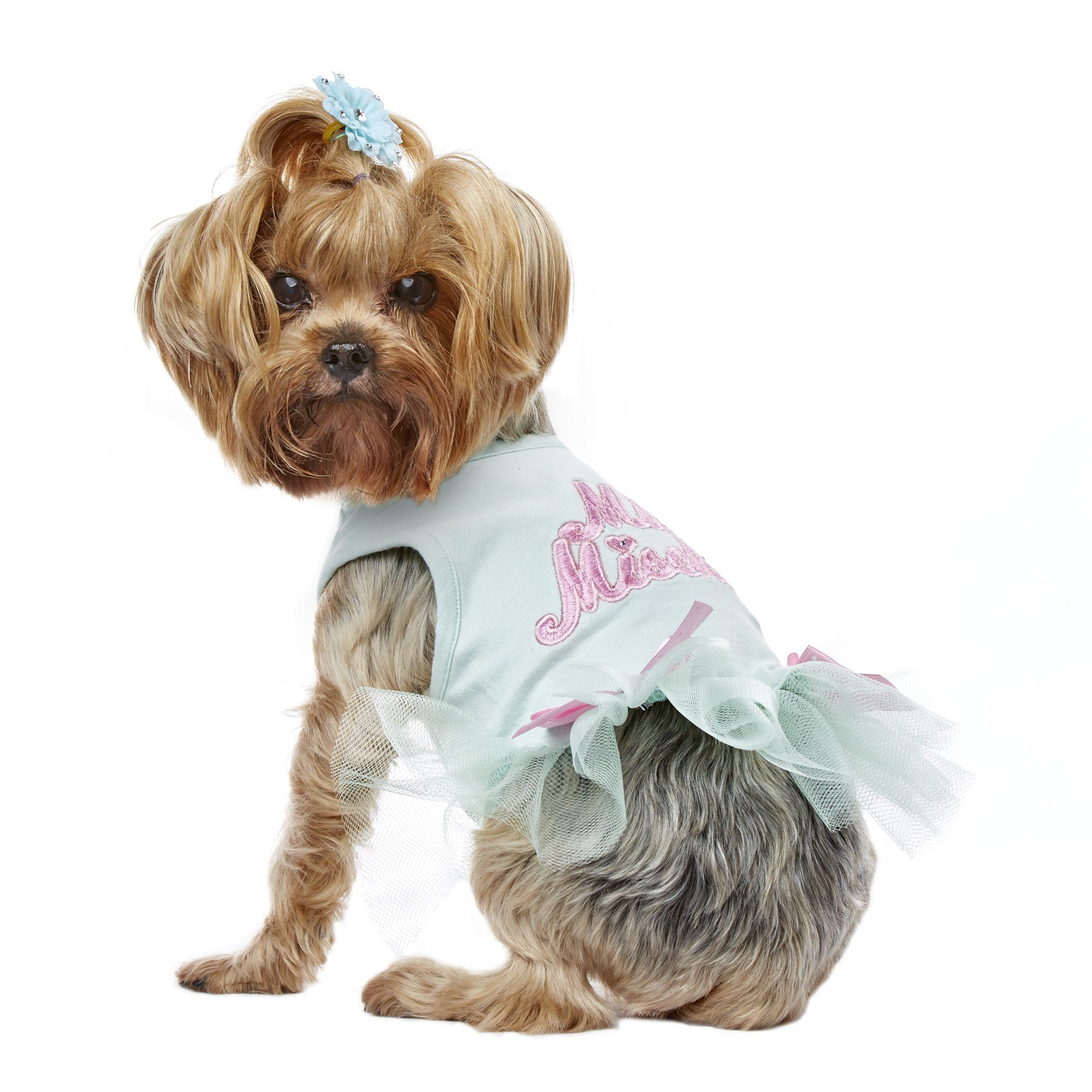 smoochie pooch blue miss mischief tutu dress small petco store