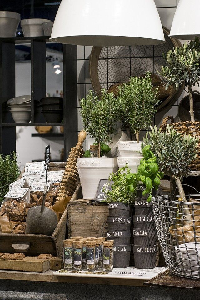 Visual merchandising retail store display home for Garden display ideas