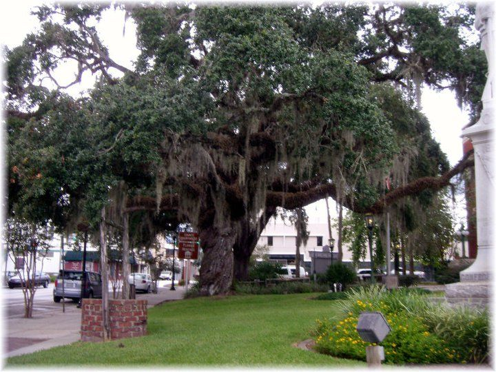 17 Best images about RV Parks Texas on Pinterest | Parks