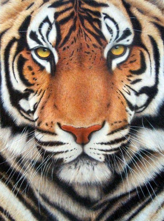 Diamond painting kit Tiger Square Diamond Full Cover, Animal embroidery, DIY diamond painting art, Tiger mosaic kit, 5D Diamond Embroidery