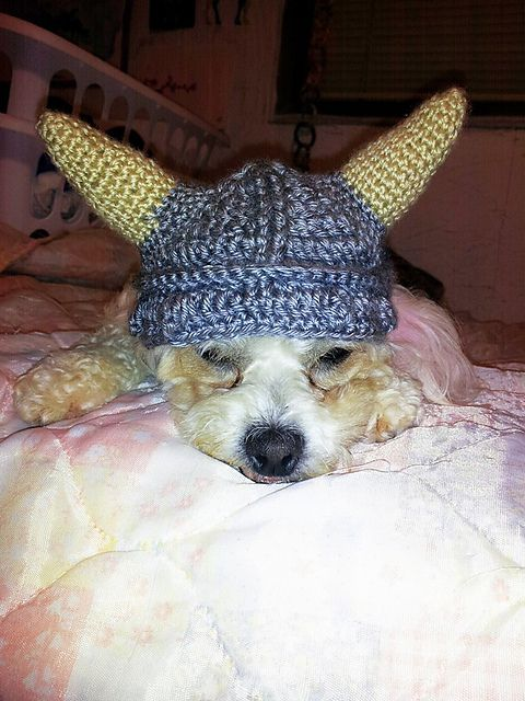 Ravelry: Dog Viking Hat pattern by Mikayla Hoople http://www.ravelry ...