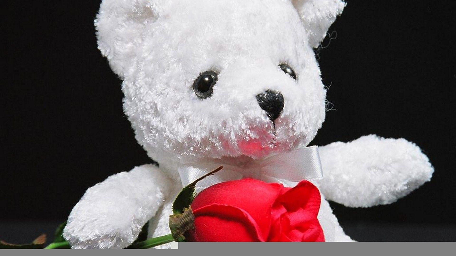 Big Teddy Bear Wallpaper For Desktop Best Wallpaper Hd Teddy Bear Wallpaper Teddy Bear Pictures Bear Valentines