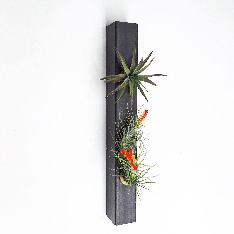 Hanging Planter - Air Planter - Minimalist planter - Steel Planter ...