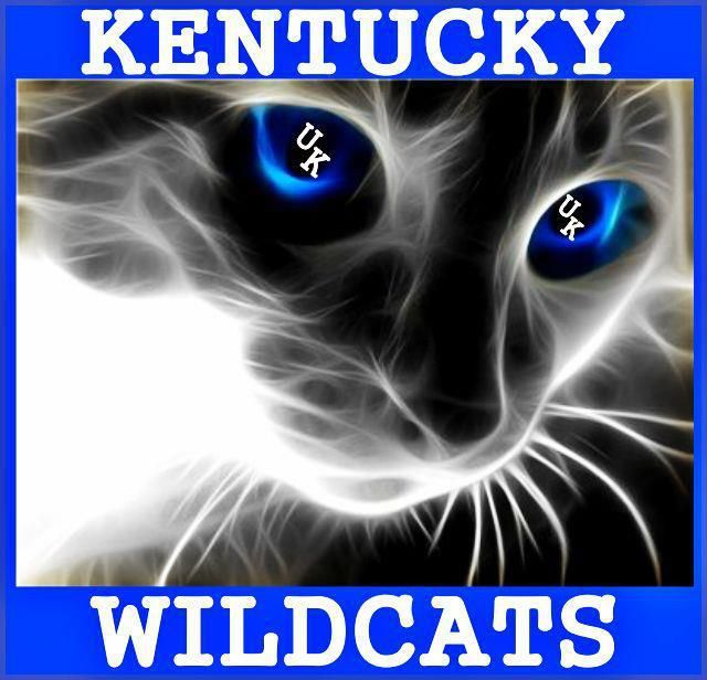 Kentucky Wildcats Williamsburg Photo Album Topix Cat With Blue Eyes Eyes Wallpaper Cat Wallpaper