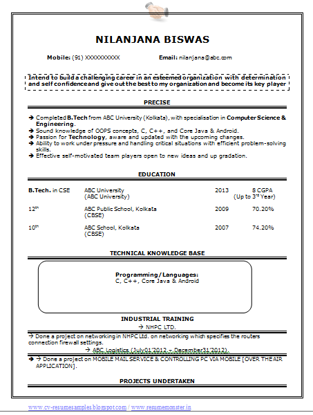 Professional Curriculum Vitae / Resume Template for All Job Seekers ...