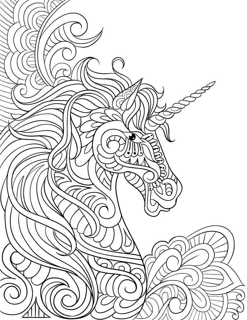 Owl Unicorn Coloring Pages Xl Design