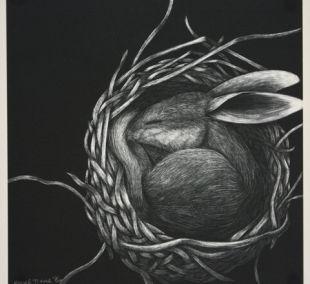 conejo en nido...esperando los huevos