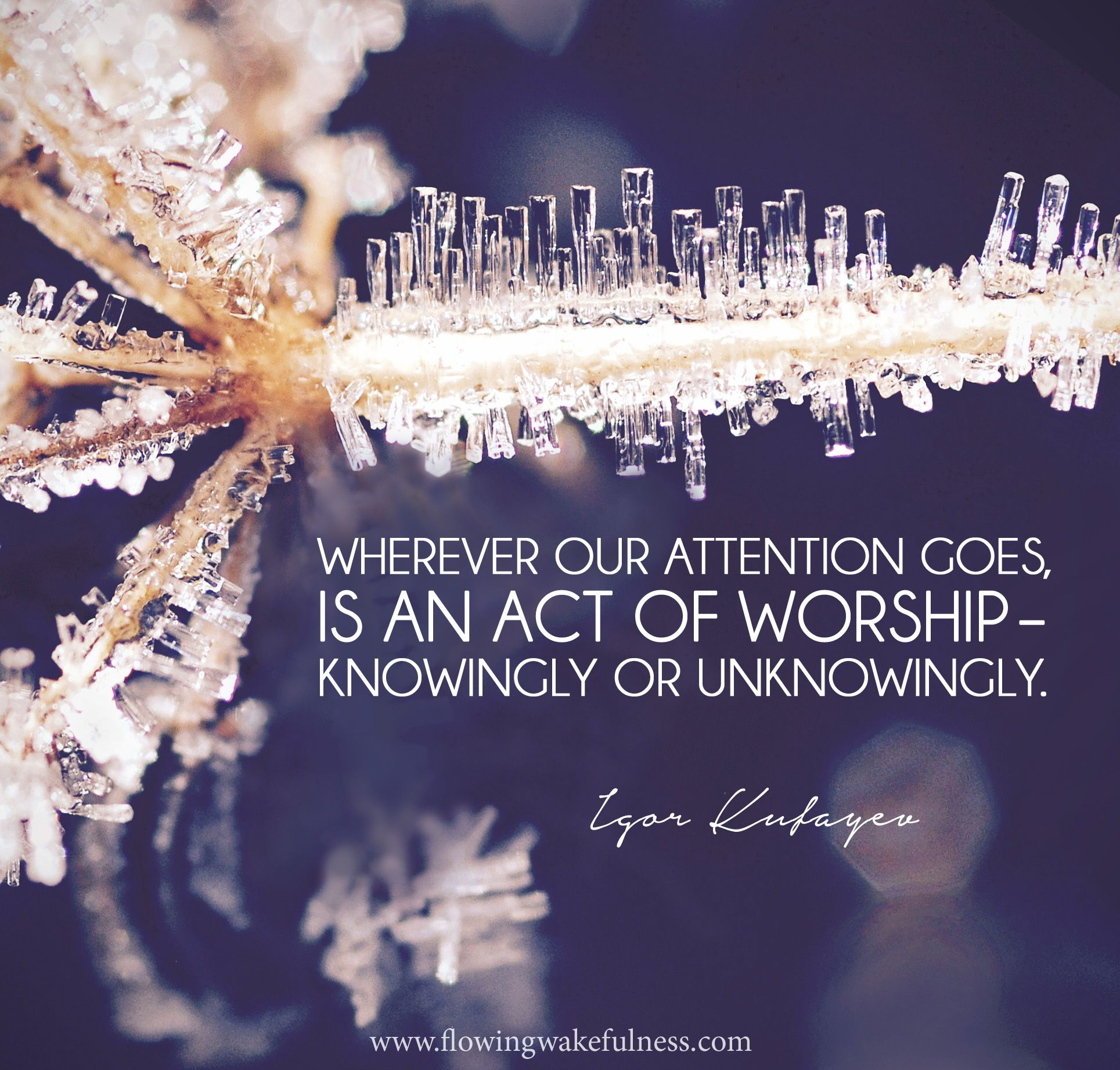 Byron Katie Quotes Wherever Our Attention Goes Is An Act Of Worship  Knowingly Or