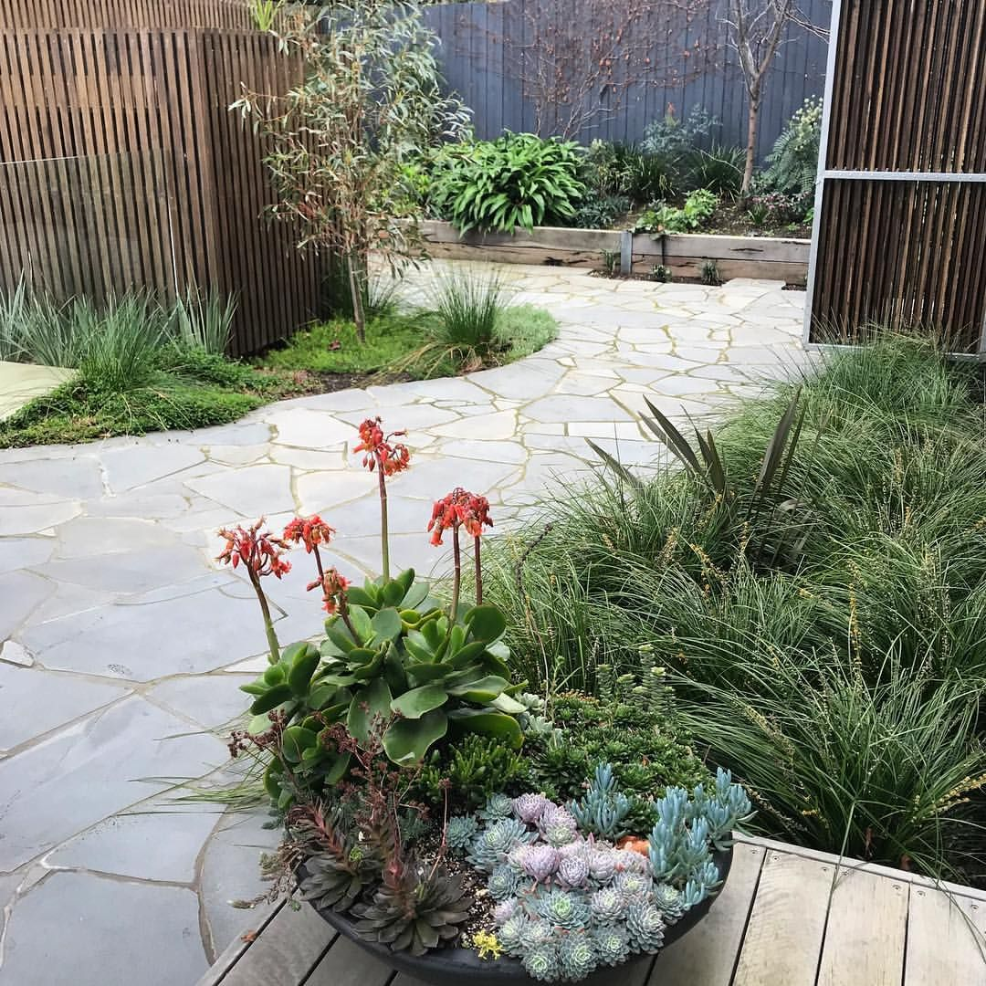 Winter In The Rear Entertaining Garden At Farmhouse Camberwell We Are Excited To Be Opening This Garden As Part Of This Years Garden