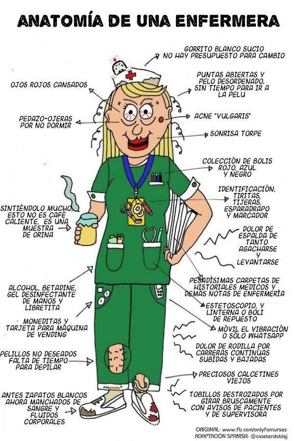 Anatomía de una Enfermera | enfermeras | Pinterest | Anatomía ...