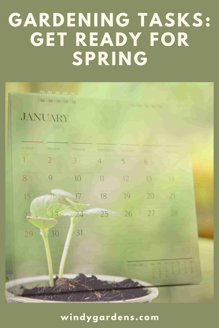 Get ready for spring planting now in 2020 garden tasks