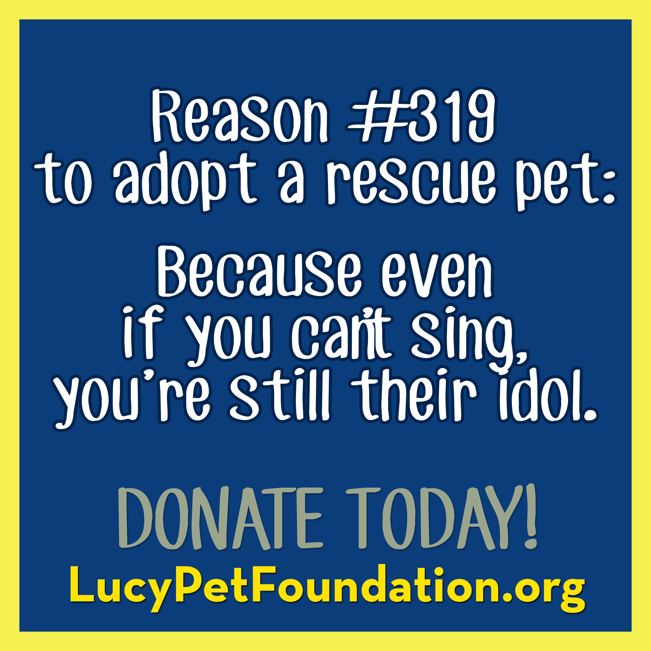 Lucy Pet Foundation (With images)