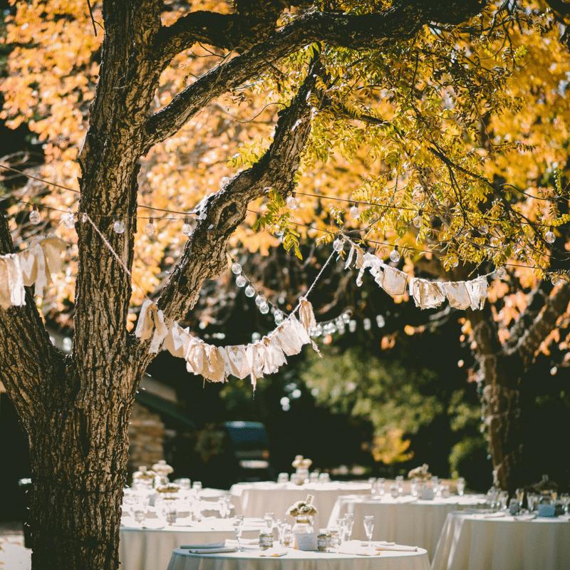 Outdoor Wedding Venues In Michigan Backyard Wedding Venues In Michigan Di 2020