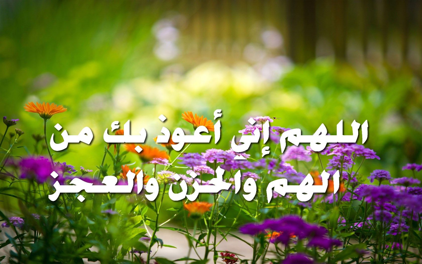 اللهم إني أعوذ بك من الهم والحزن والعجز صور اسلامية Necklace Plants Lei Necklace