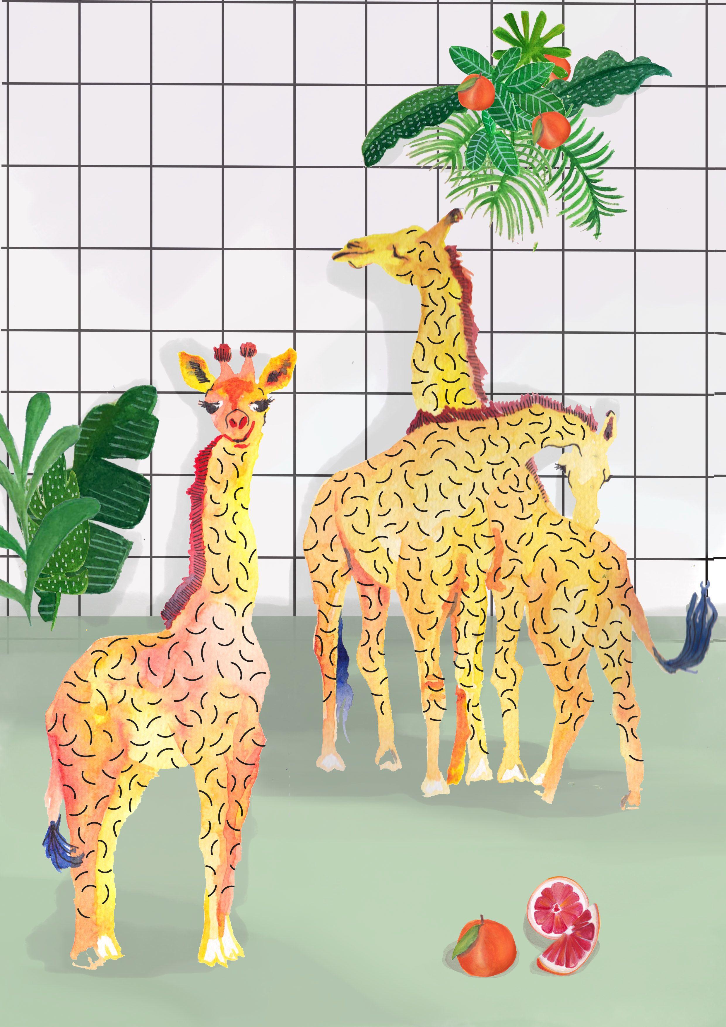 Giraffe & Grapefruit Illustration Kids Wall art poster design ...
