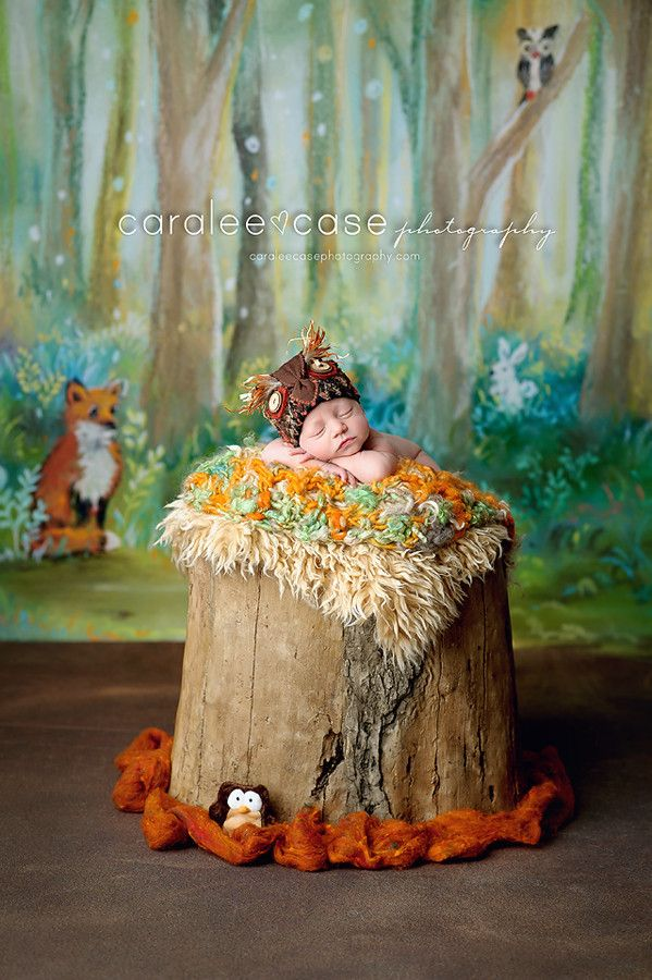c29c1df1adf Woodland Gathering - hand painted backdrop    Intuition Backgrounds