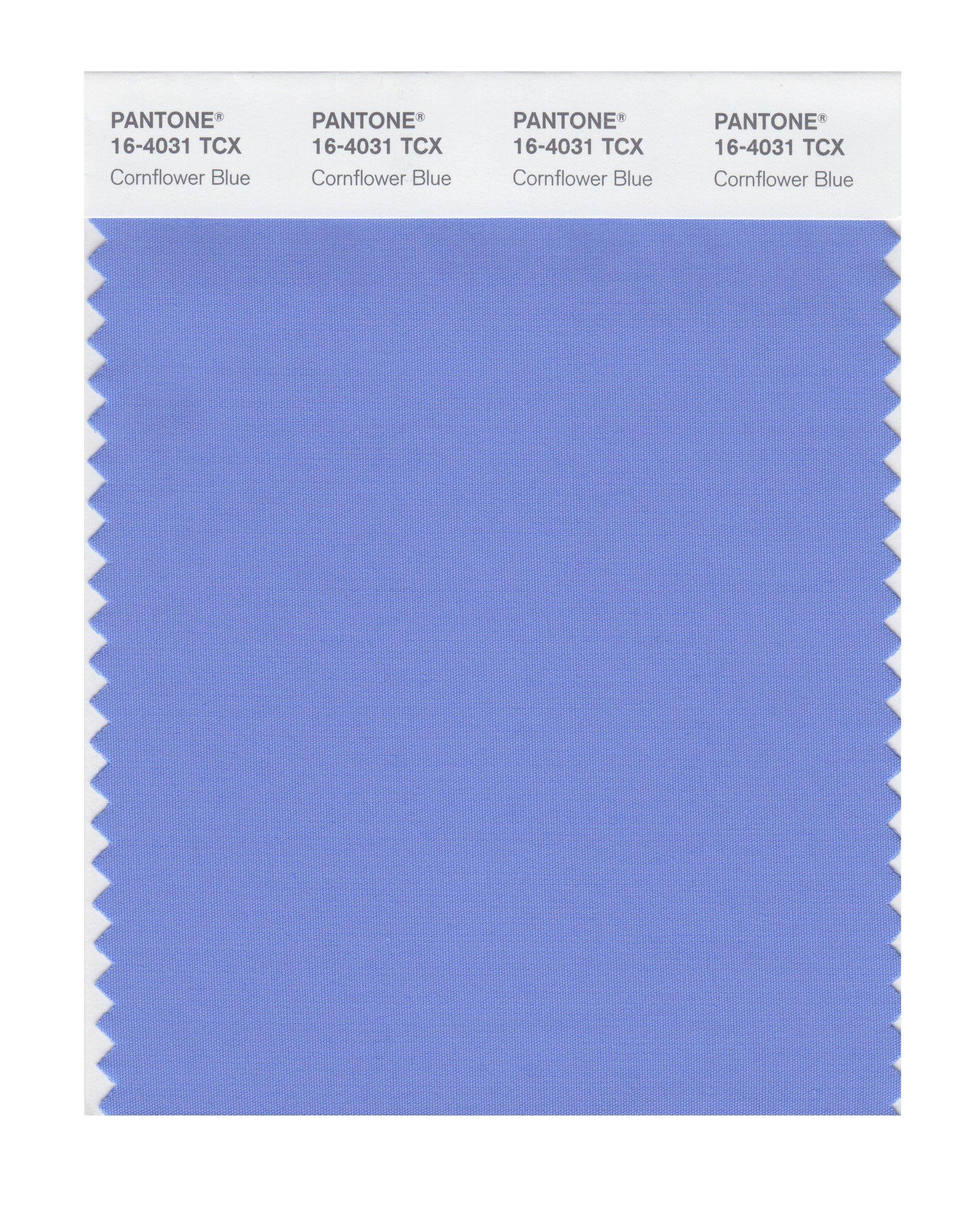 Pantone Smart 16 4427x Color Swatch Card Horizon Blue House Paint Cornflower