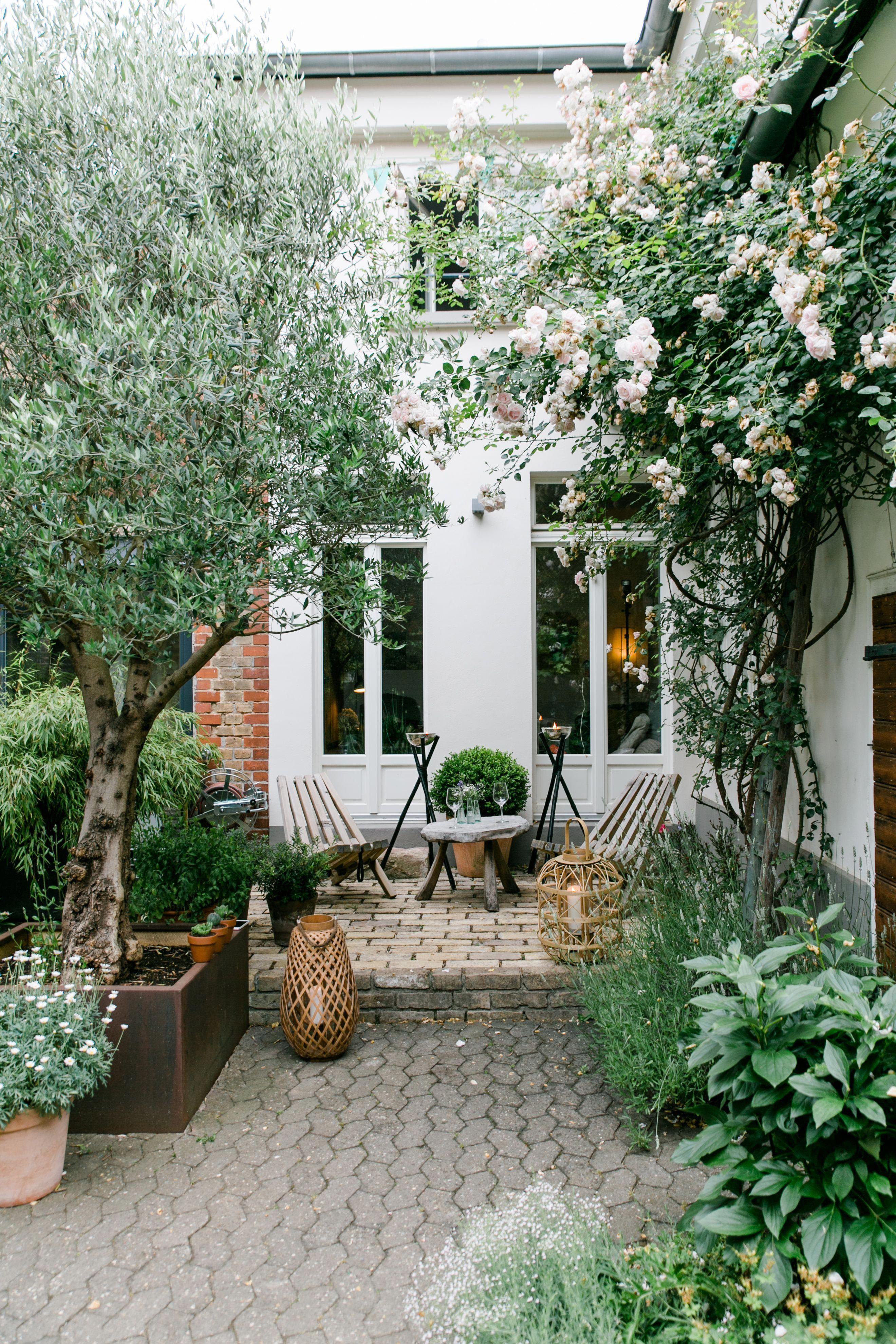 Unser Hofchen Im Hr Fernsehen Heldamherd Townhouse Garden Small Backyard Design Patio Inspiration Townhouse backyard design ideas