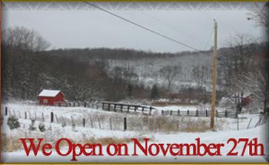 Christmas Trees, Christmas Tree Farms,Live Christmas Trees Newton, NJ