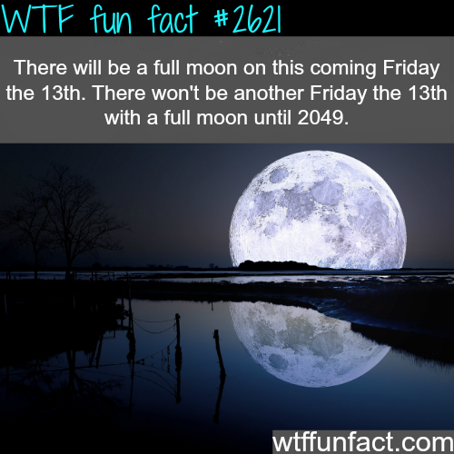 Full Moon this Friday the 13th WTF fun facts Wtf fun