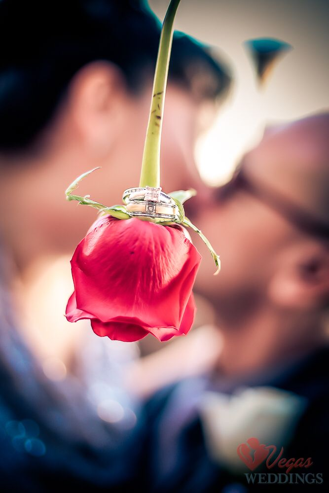 Beautiful Creative Affordable Wedding Photography By Vegas Weddings