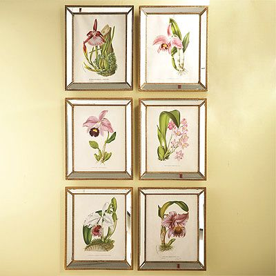 Orchid Wall Art Prints Set of 6: Create impact on a large wall with ...