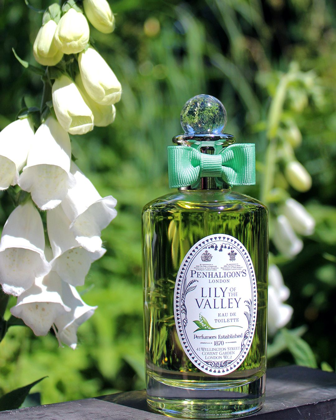 Lily of the valley in 2020 lily of the valley green