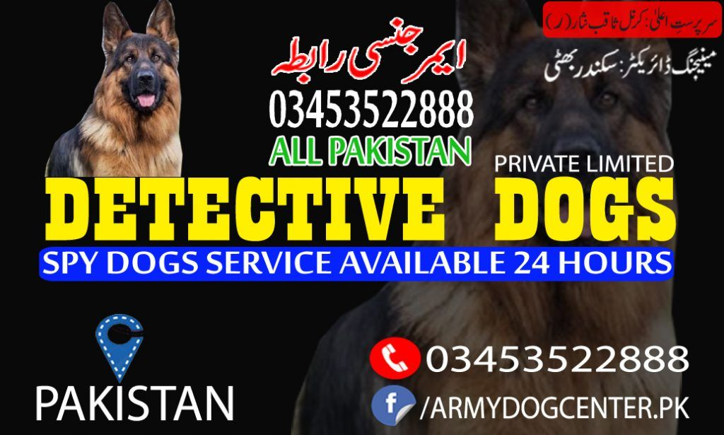 Dogs Are Great Disease Detectors Army Dog Center Multan A
