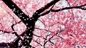 Pink;)