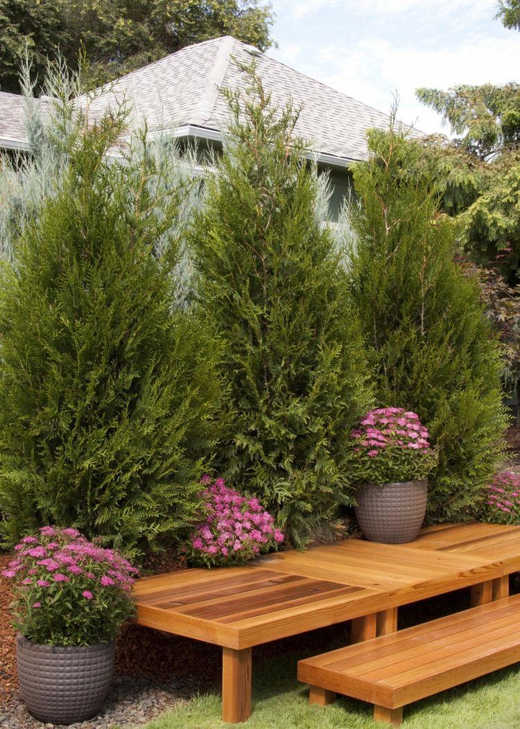 Pin On Sichtschutz Fur Garten Und Terrasse