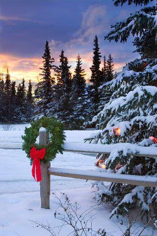 weihnachten ende schiene spaltung winter wonderland. Black Bedroom Furniture Sets. Home Design Ideas