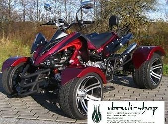 quad atv speedstar 300 ccm automatik quad mit 2 personen. Black Bedroom Furniture Sets. Home Design Ideas