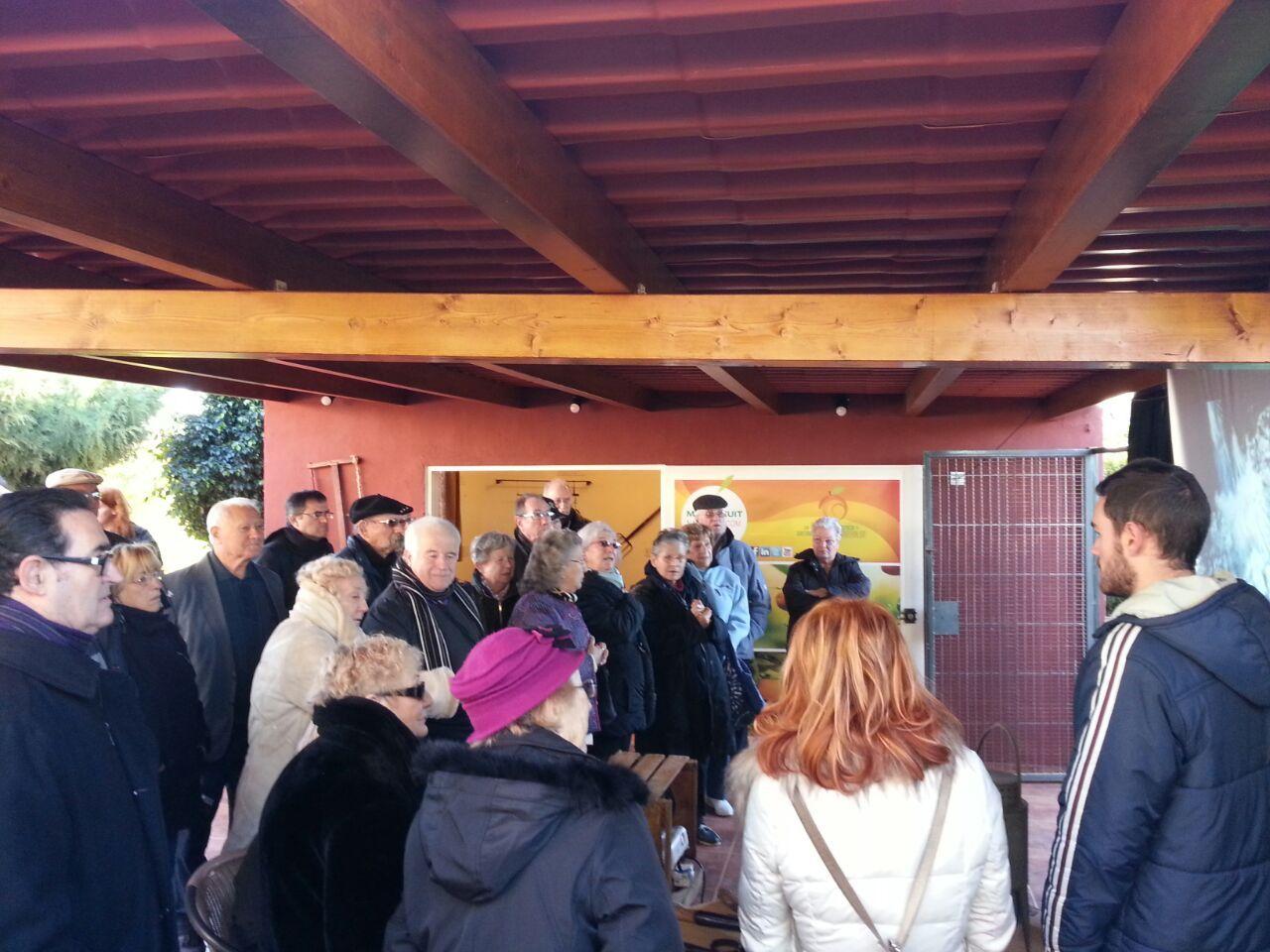 Ruta Turística y Gastronómica de la Naranja en Villareal, Valencia