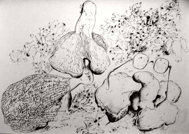 Günter Grass ~ illustration for Mit Sophie in die Pilze gegangen [Gone amongst the mushrooms with Sophie ] 1976