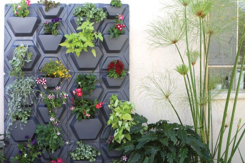 Palram PlantScape - Vertical Garden | Palram Applications