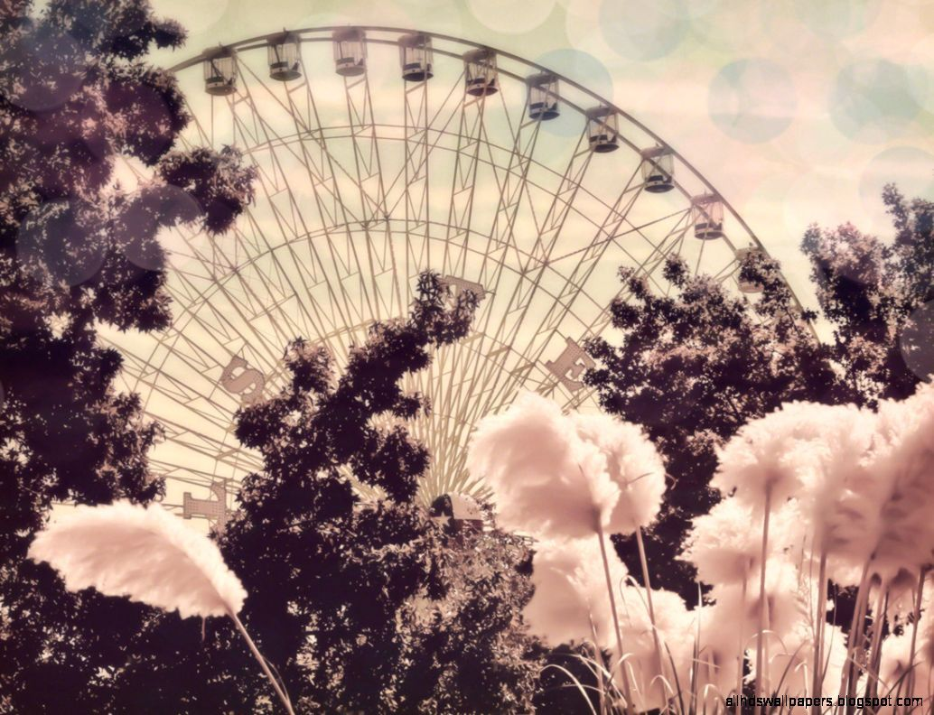 Vintage Photography Tumblr Themes