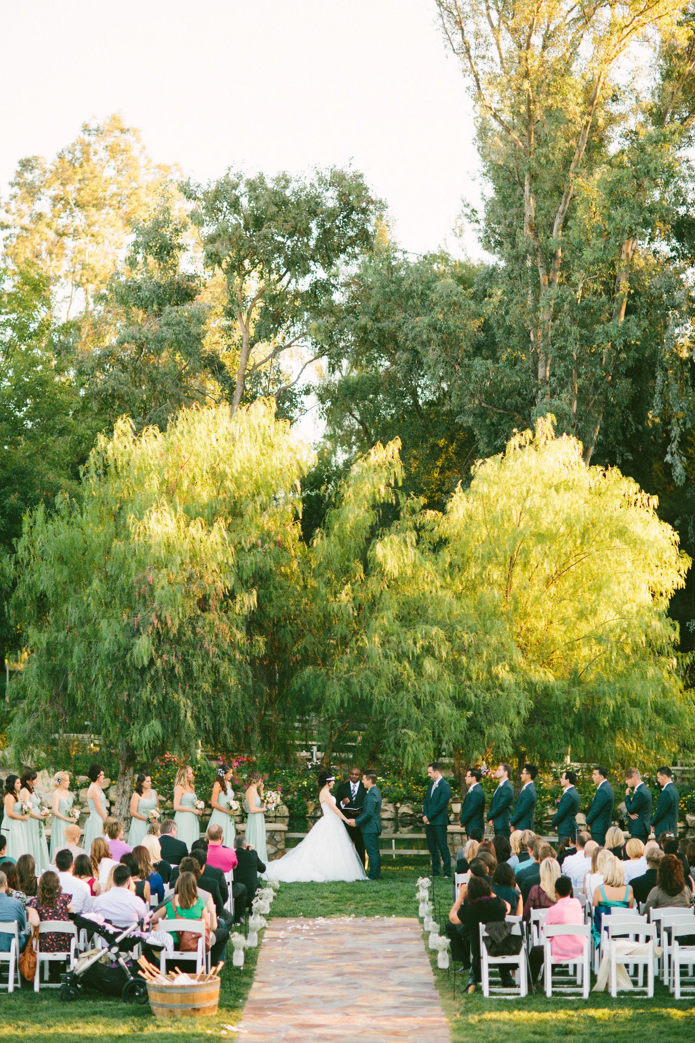 Diy Vineyard Wedding In Temecula