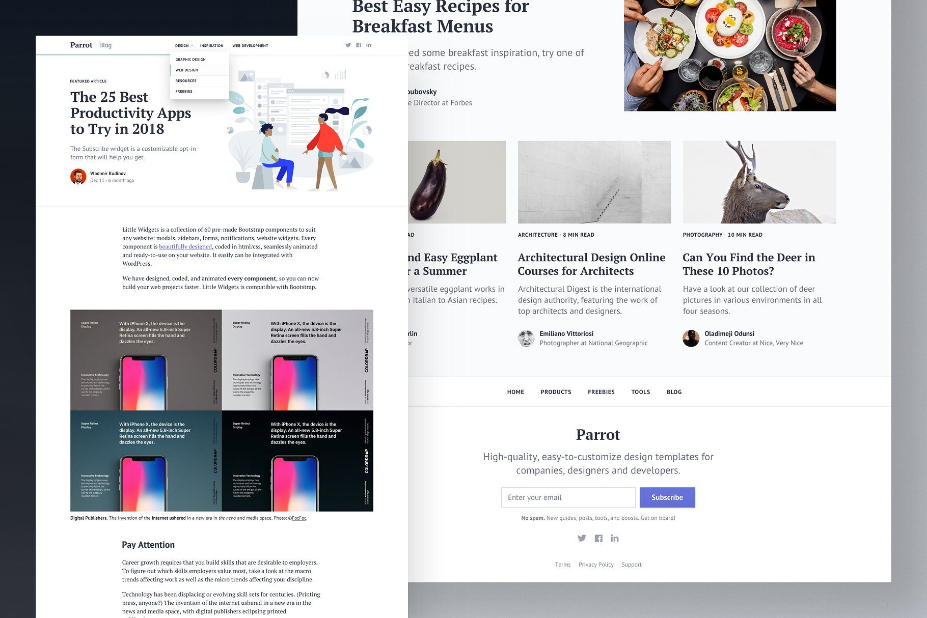 Responsive Bootstrap Blog Template Amp Theme