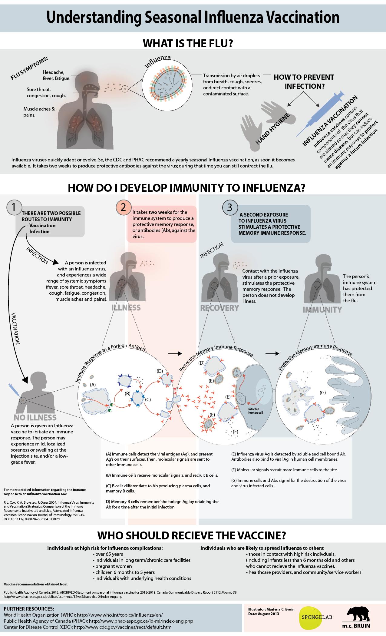 Understanding Seasonal Influenza Vaccination