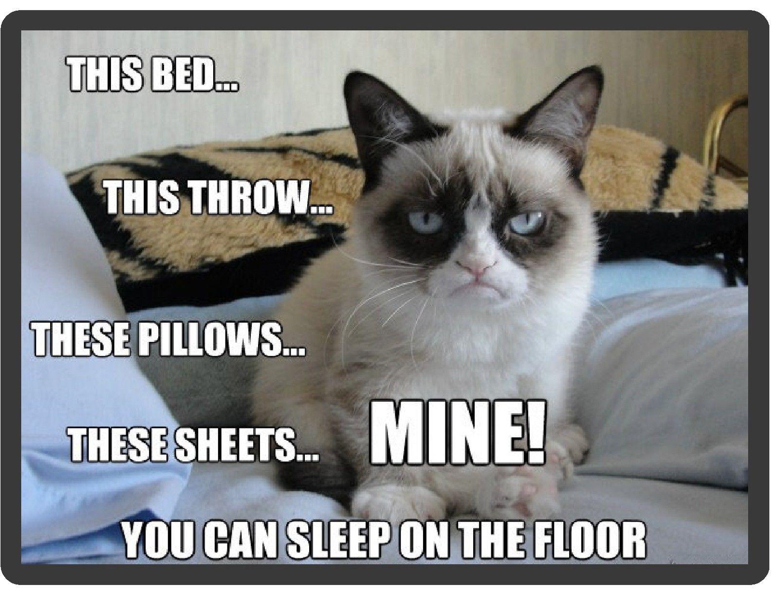 $55  Funny Grumpy Cat Sleep On Floor Refrigerator Locker