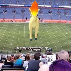 The Best Pokémon Go Sightings