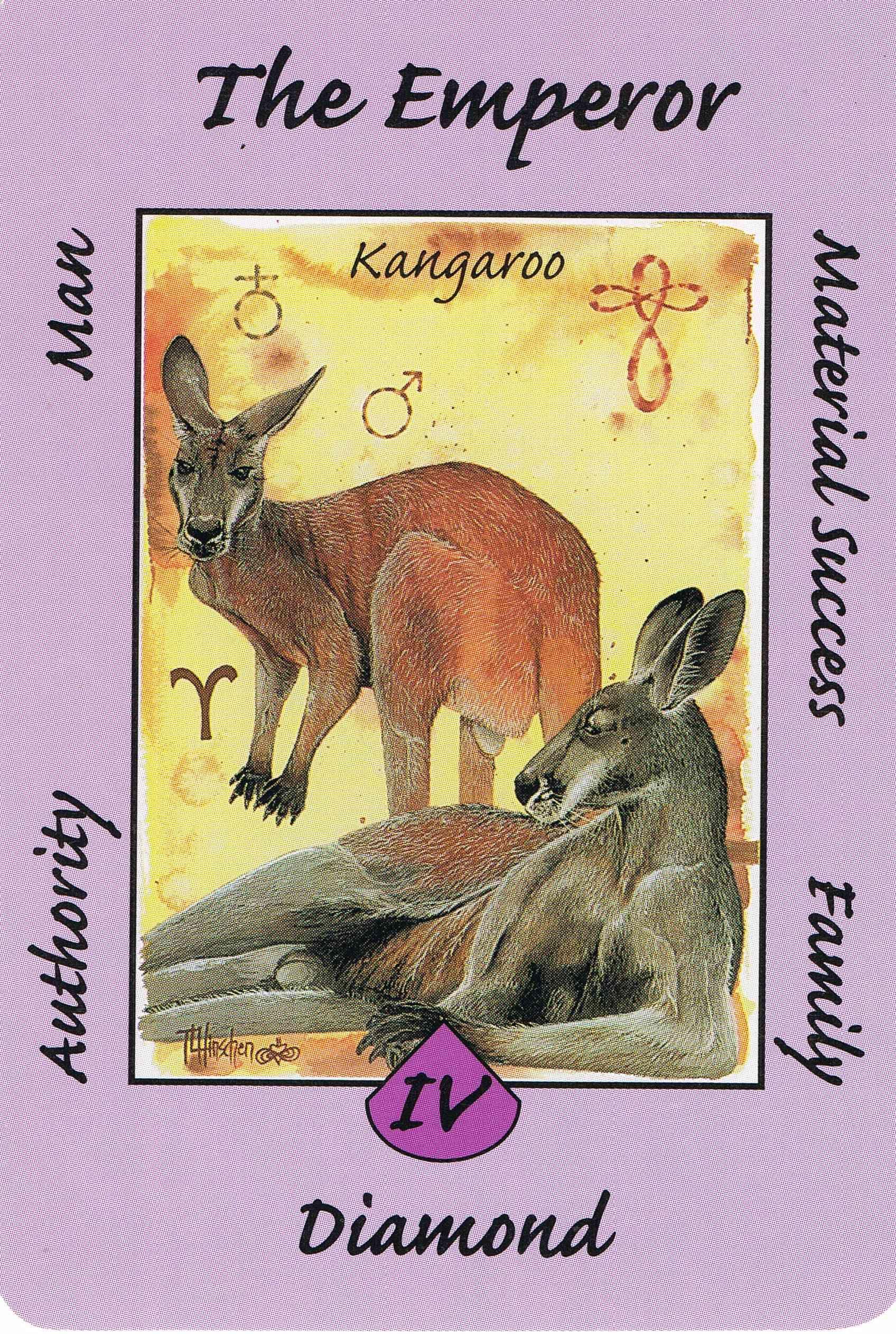 Iv the emperor kangaroo australian animal tarot deck
