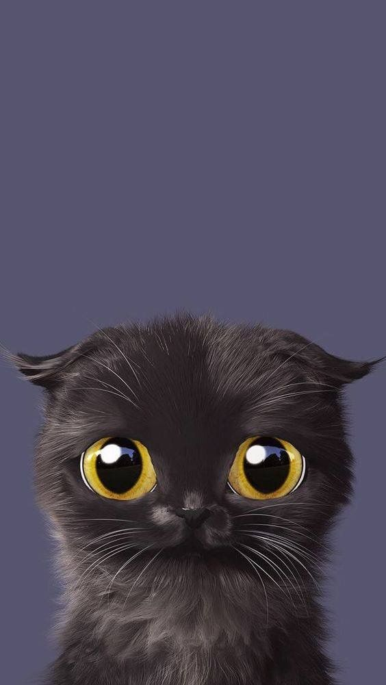 Black Kitten Cute Phone2 Wallpaper Cat Art Cat Wallpaper