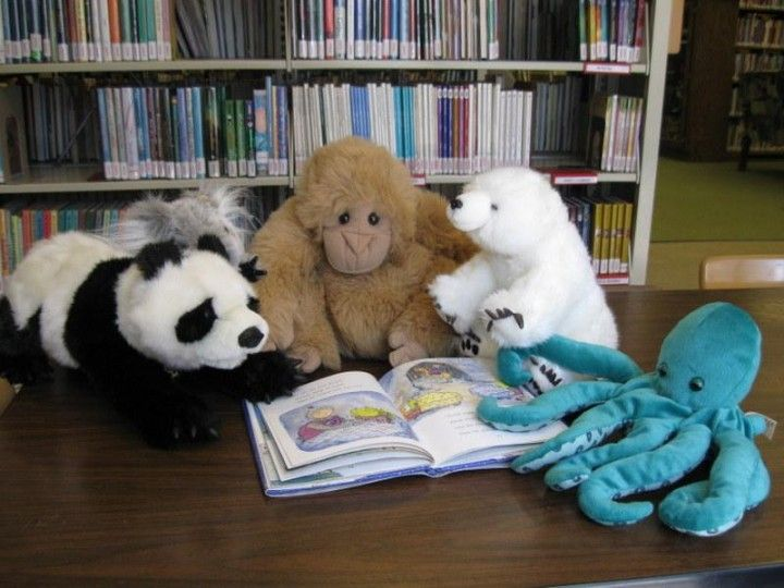Campout With Clover!  A Stuffed Animal Sleepover El Cerrito, CA #Kids #Events